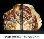 a pair of petrified wood...