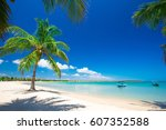 untouched tropical beach in sri ... | Shutterstock . vector #607352588