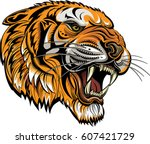 tigers face. saber toothed... | Shutterstock .eps vector #607421729
