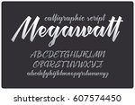 calligraphic handwritten font... | Shutterstock .eps vector #607574450