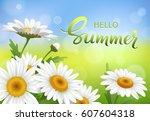 hello summer handmade lettering ...   Shutterstock .eps vector #607604318