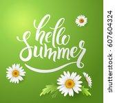 hello summer handmade lettering ... | Shutterstock .eps vector #607604324