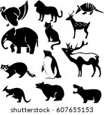 animals illustration | Shutterstock .eps vector #607655153
