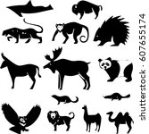animals illustration | Shutterstock .eps vector #607655174