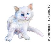 Stock photo little white kitten watercolor illustration kitten for fashion print poster textiles fashion 607658750