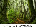 nepal jungle | Shutterstock . vector #607708094