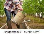 farming  gardening  agriculture ... | Shutterstock . vector #607847294