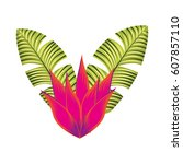 exotic and tropical flower icon ... | Shutterstock .eps vector #607857110