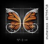 golden section  ratio  divine... | Shutterstock .eps vector #607954718