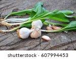 wild garlic ramson or bear... | Shutterstock . vector #607994453