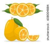 vector illustration logo for... | Shutterstock .eps vector #608004884