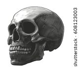 human skull in woodcut style.... | Shutterstock .eps vector #608123003