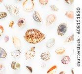 ocean shells isolated on white... | Shutterstock . vector #608151830