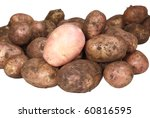 Handful Of Young Potato. One...
