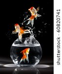Goldfishs Jumps Upwards From A...