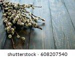 willow branch   Shutterstock . vector #608207540