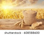 ears of wheat and grains in... | Shutterstock . vector #608588600