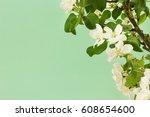 spring flowers on green ... | Shutterstock . vector #608654600