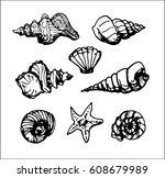 set of seashell contour on...   Shutterstock .eps vector #608679989