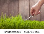 man cuts grass for lawn with... | Shutterstock . vector #608718458