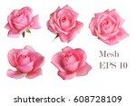Stock vector  mesh pink roses 608728109