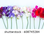 beautiful flowers isolated of...   Shutterstock . vector #608745284