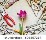 Various Tools  Pliers ...
