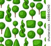 boxwood topiary garden plants.... | Shutterstock .eps vector #608843240