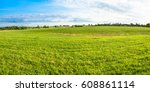 grass field  green spring... | Shutterstock . vector #608861114