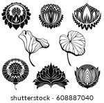lotus collection   Shutterstock .eps vector #608887040