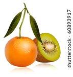 photo realistic vector of... | Shutterstock .eps vector #60893917