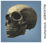 human skull in engraving style  ... | Shutterstock .eps vector #608939798