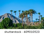 a perfect blue sky  palm trees... | Shutterstock . vector #609010523