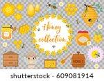 honey collection. beekeeping...