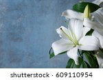 beautiful white lilies on... | Shutterstock . vector #609110954