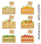wooden boxes of vegetables and... | Shutterstock .eps vector #609123350