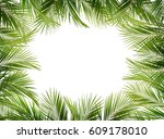 green palm branches on white... | Shutterstock . vector #609178010