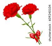 mother's day carnation spring... | Shutterstock .eps vector #609240104