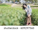 young woman on tea plantation... | Shutterstock . vector #609297560