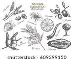 natural cosmetics. ingredients. ... | Shutterstock .eps vector #609299150
