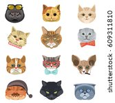 Stock vector funny cartoon cats heads and muzzle faces vector icons set different cat breed types in hipster 609311810