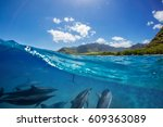 Pod Of Dolphins Traveling Alon...