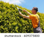 man gardener trimming hedge... | Shutterstock . vector #609375800