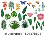 vector collection of tropical... | Shutterstock .eps vector #609375878