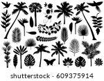 vector illustrations silhouette ... | Shutterstock .eps vector #609375914