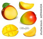 collection of vector mangoes ... | Shutterstock .eps vector #609444434