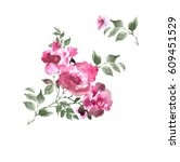 watercolor roses. hand painted... | Shutterstock . vector #609451529