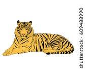 tiger illustration vector | Shutterstock .eps vector #609488990