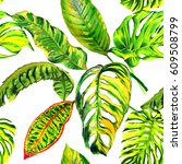 tropical hawaii leaves palm... | Shutterstock . vector #609508799