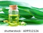 eucalyptus essential oils in... | Shutterstock . vector #609512126